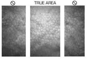 131133853011 300x202 - Mikroskop endotelialny dla banków rogówki EB-2000xyz