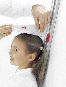 1289987799216 locking screw rgb600h 227x300 - SECA 216 Mechaniczny wzrostomierz dla dzieci i dorosłych