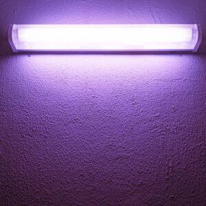 Jakie są zasady działania lamp bakteriobójczych?